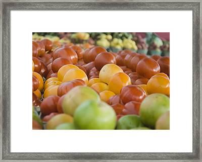 Farmers Market - 011 Framed Print
