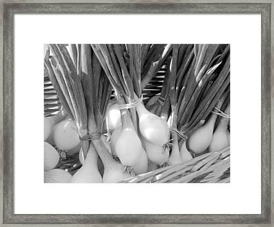 Farmer's Market Green Onions Framed Print by Ann Powell
