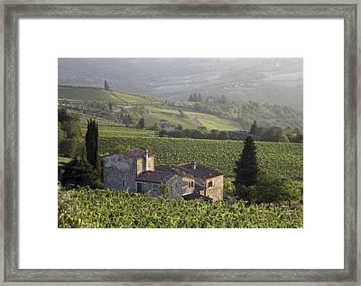 Farmhouse In Vineyard At Sunset Framed Print