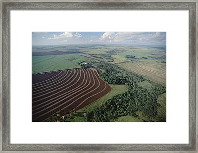 Farming Region With Forest Remnants Framed Print