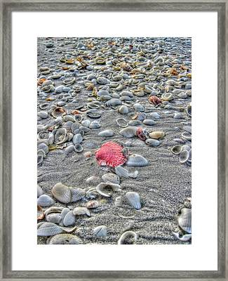 Fashion Satement Framed Print by Greg and Chrystal Mimbs