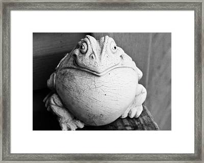 Fat And Happy Framed Print