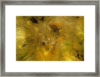 Fat Framed Print by Fred  Sheridan