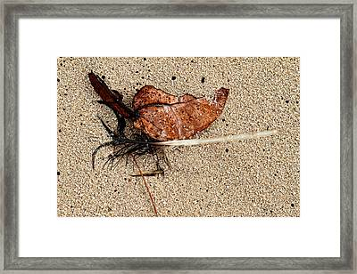 Fate Intertwined Framed Print by Joel Lau