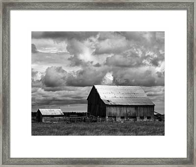 Father And Son Framed Print by Darren Creighton