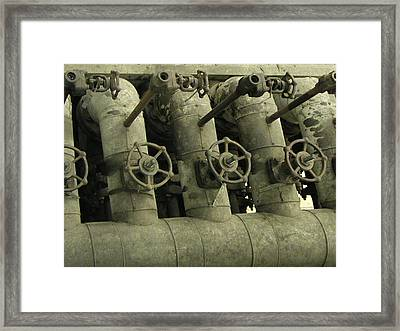 Fauceted Framed Print