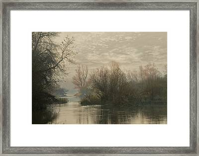 Fauna And Flora Framed Print by Akos Kozari