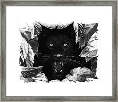 Fauxx Framed Print by Brent Ander