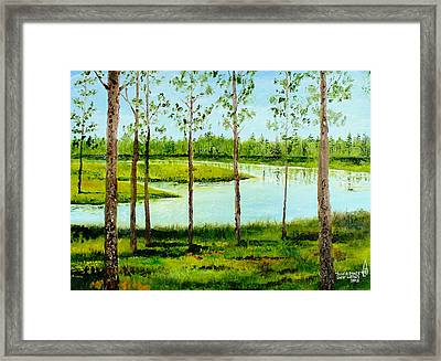 Faver Dykes Framed Print