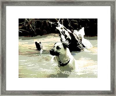 Favorite Swimming Hole Framed Print by Dorrie Pelzer
