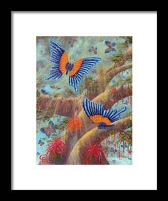 Sandru Framed Prints