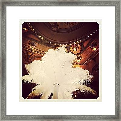 Feathered Centerpiece Framed Print