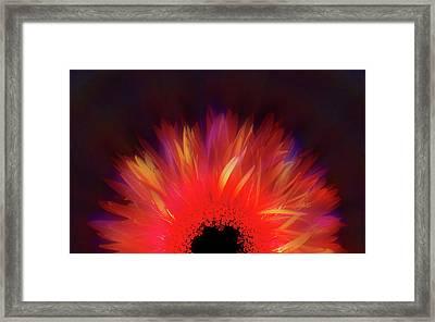 Feathered Floral Framed Print by Li   van Saathoff