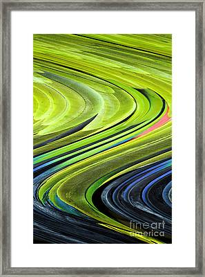 Feathers Framed Print by Shirley  Taylor