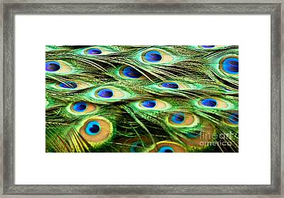 Feathery Waves Framed Print