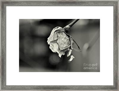 February 15th Framed Print by Dean Harte