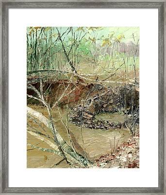 February Stream Framed Print by Sergey Zhiboedov