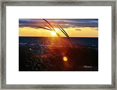 February Sunset Framed Print