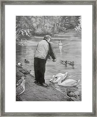 Feeding The Birds Framed Print by Kim Hunter