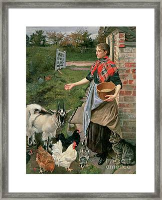Feeding The Chickens Framed Print by William Edward Millner
