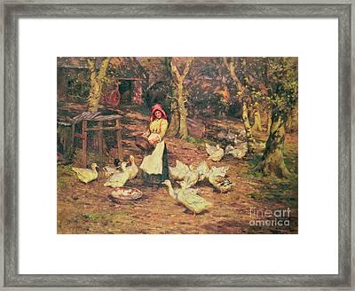 Feeding The Ducks Framed Print by Joseph Harold Swanwick
