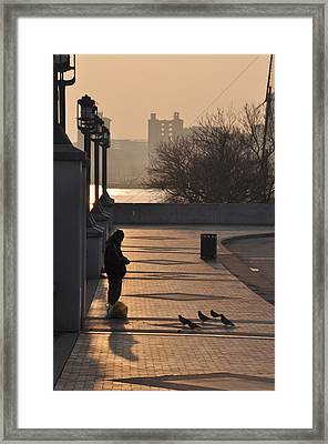 Feeding The Pigeons At Dawn Framed Print by Bill Cannon