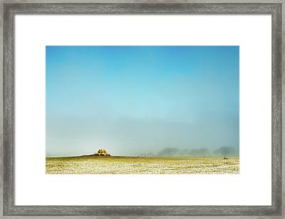 Feeding Time Framed Print by Paul McGee