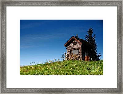 Feel The Breeze Framed Print by Lois Bryan