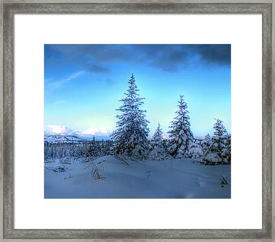 Framed Print featuring the photograph Feeling Blue by Michele Cornelius