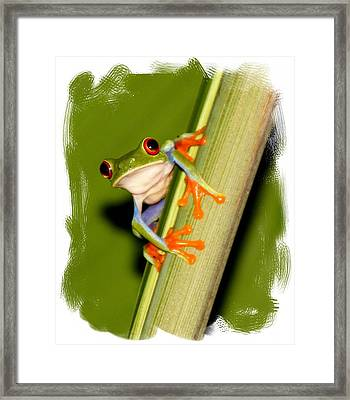 Framed Print featuring the photograph Feeling Froggy by Myrna Bradshaw