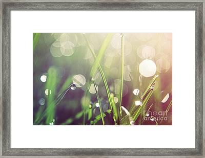 Feeling Good Framed Print by Aimelle