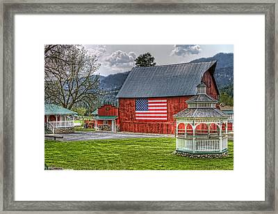 Feeling Patriotic Framed Print