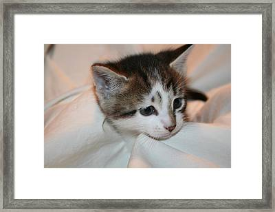 Feeling Small Framed Print by Eduardo Bouzas
