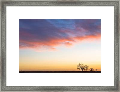 Feeling Small Framed Print by James BO  Insogna