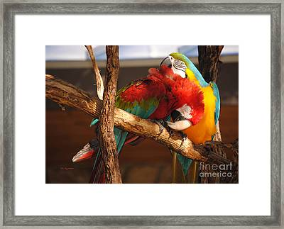 Feels So Good Framed Print by DiDi Higginbotham