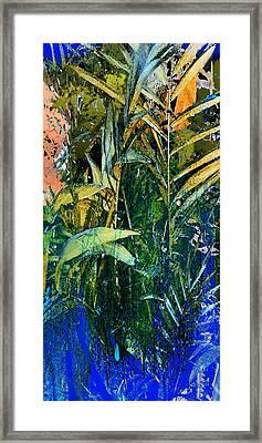 Feet In The Water Framed Print by Anne Weirich