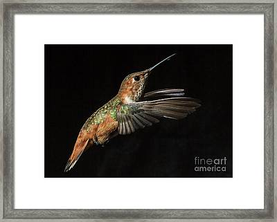Female In Flight  II Framed Print by Carl Jackson