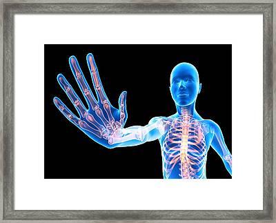 Female Skeleton Showing The Stop Sign Framed Print by Pasieka