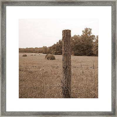 Fence And Field Framed Print by Sheila Harnett