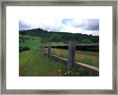 Fence And Poppies Framed Print by Kathy Yates