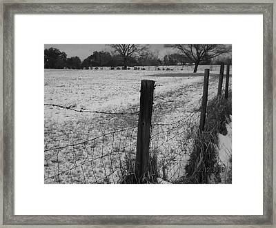 Fence And Snow Framed Print by Floyd Smith