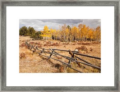 Fence At Kenosha Pass Framed Print by Adam Pender