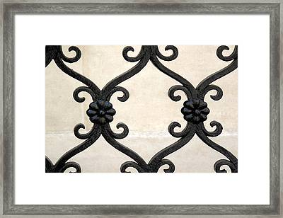 Framed Print featuring the photograph Fence Close-up 001 by Dorin Adrian Berbier