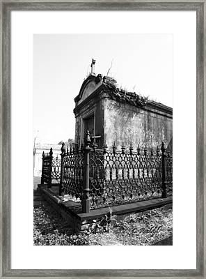 Fenced In Framed Print by Cheri Randolph