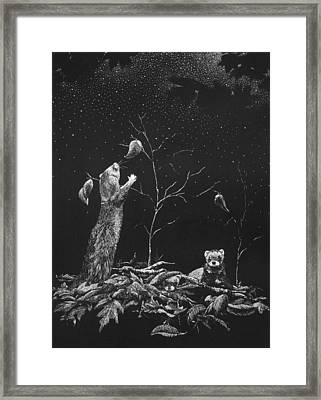 Ferret Dreams Framed Print
