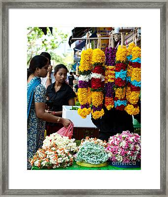 Festival Of Lights Framed Print by Ivy Ho