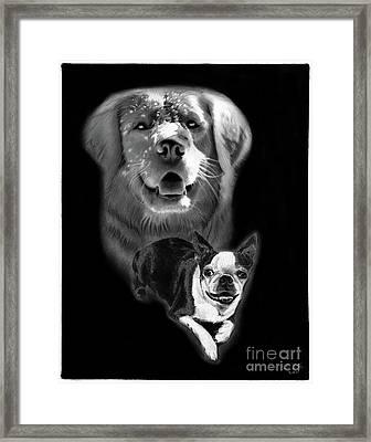 Festus And Rosie Framed Print by Peter Piatt