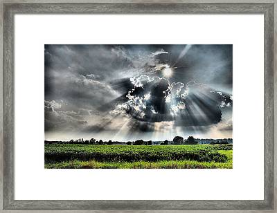 Field Of Beams Framed Print by Steven Richardson