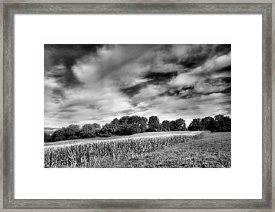 Field Of Dreams IIi Framed Print
