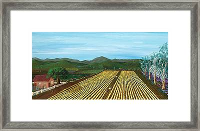 Field Of Yarrow-that's A Flower Framed Print
